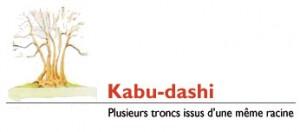 kabudashi