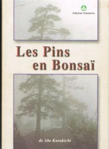 les pins en bonsa abe kurakichi