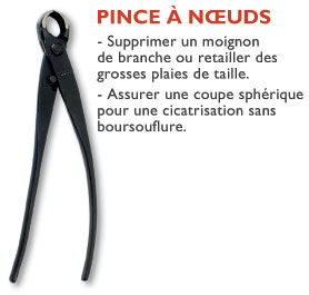 pinceanoeuds