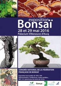 affiche-congrès-2016-212x300